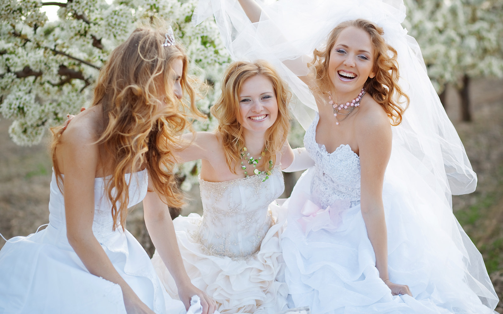 How to choose a beautiful dress for the wedding